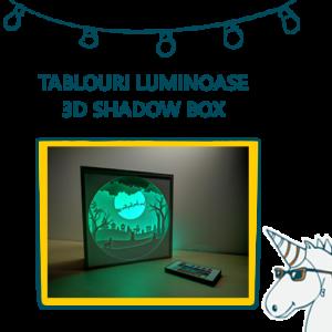 Tablouri shadow box